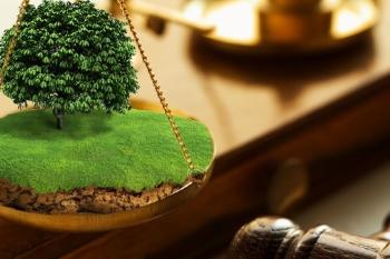 Министерством строительства и архитектуры Ульяновской области объявлен аукцион на право заключения договоров аренды