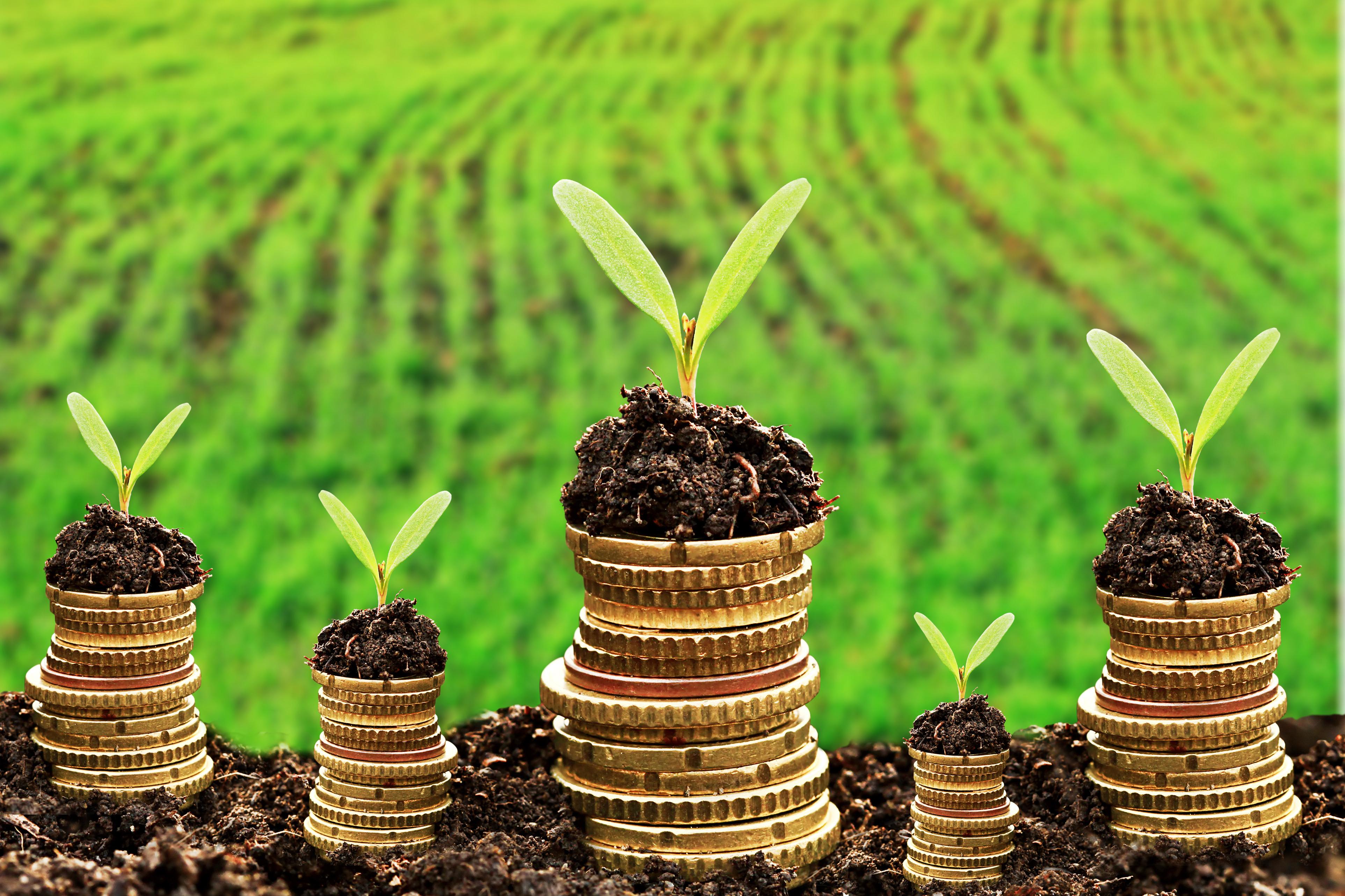 Как правильно вносить арендную плату за земельные участки?