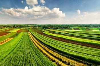 Уточнена компетенция органов, осуществляющих государственный земельный надзор, по составлению протоколов и рассмотрению дел об административных правонарушениях