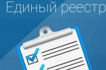 С 1 июля 2021 года в России заработает Единый реестр видов контроля (надзора)