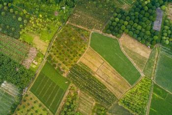 С подачи КС РФ разрешат не вносить в ЕГРН сведения о вспомогательном виде использования земли