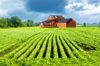 Нецелевое использование земли влечёт повышение ставки земельного налога