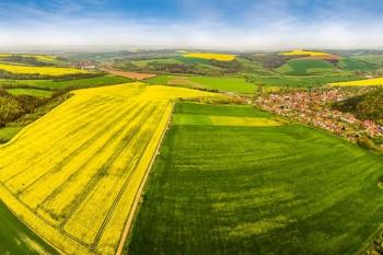 Разъяснены особенности определения доли земельного участка в гектарах или баллах