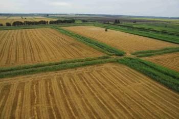 Не используемая по целевому назначению сельхозземля облагается по общей ставке