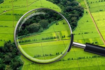 Эксперимент по созданию единого ресурса о земле и недвижимости планируют начать с 1 июня