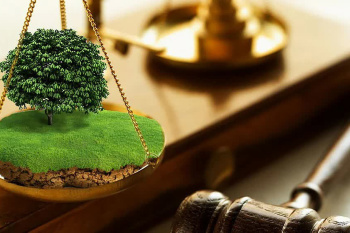 Министерством строительства и архитектуры Ульяновской области объявлен аукцион на право заключения договоров аренды в г.Ульяновске
