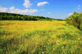 Нецелевое использование сельхозугодий будут определять по новым признакам