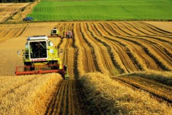 Обзор судебной практики по делам, связанным с предоставлением земельных участков сельскохозяйственным организациям