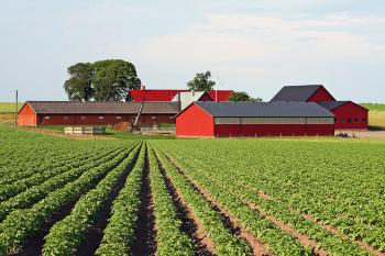 Разработан законопроект в целях поддержки и создания условий для развития малого предпринимательства на селе в форме крестьянского (фермерского) хозяйства