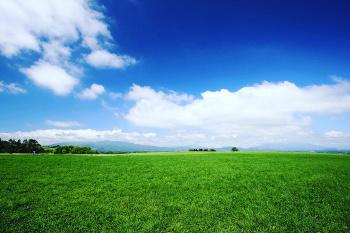 Законопроектом уточняется перечень случаев возмещения правообладателям земельных участков убытков, возникающих в связи с правовым регулированием использования земли