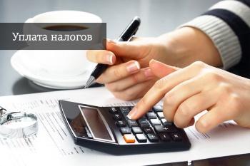 Предлагается установить временный мораторий на начисление штрафных санкций за несвоевременную уплату налога на имущество физлиц