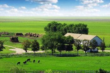 Предоставление земельных участков в аренду крестьянским (фермерским) хозяйствам, сельскохозяйственным организациям, участвующим в программах государственной поддержки в сфере развития сельского хозяйства